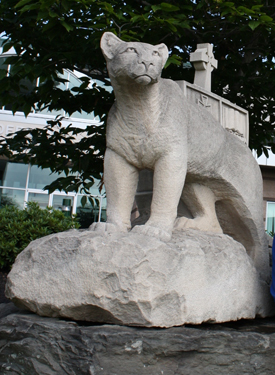Misericordia University Cougar Statue