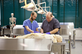 Misericordia University Cadaver Lab