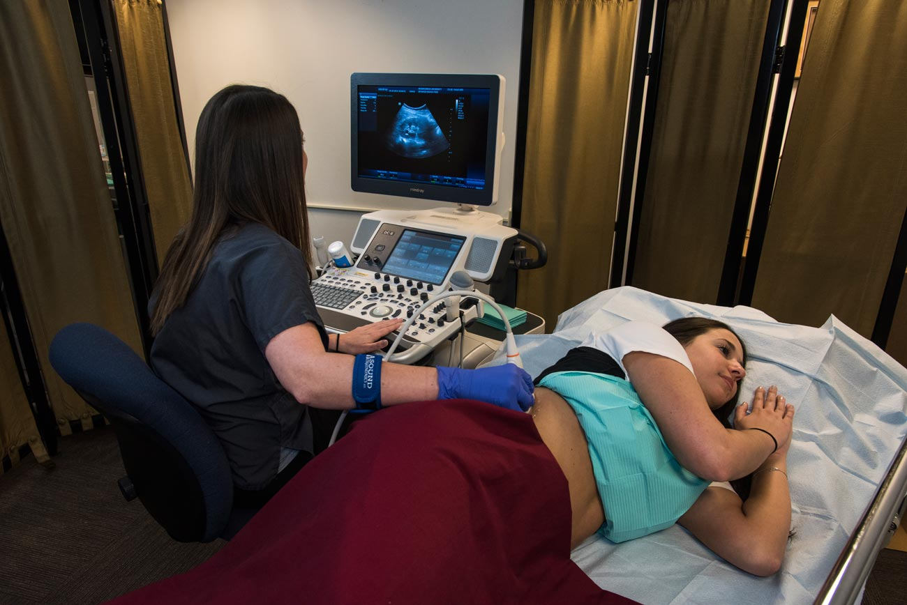 Misericordia university diagnostic sonography certificate opens a new window 1betcityfo Gallery
