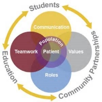 Interprofessional education connection chart